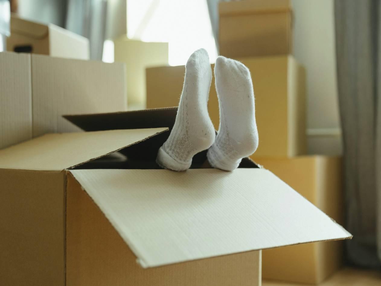 Kutije za selidbe de;ije noge vire
