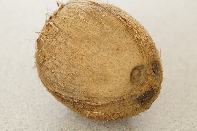 kokos-2