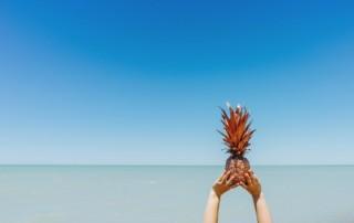 ananas-more-plavo-nebo